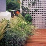 wooden terrace with plants